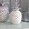 Behälter Innenzusatz Ananas weiß silber